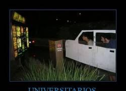 Enlace a UNIVERSITARIOS