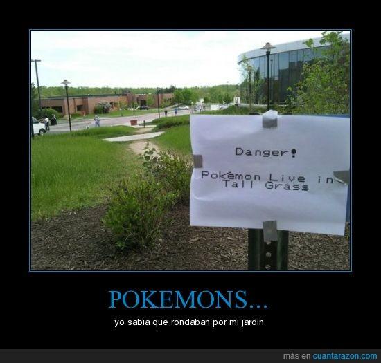 cartel,pikachu,Pokemons,yo sabia que existian