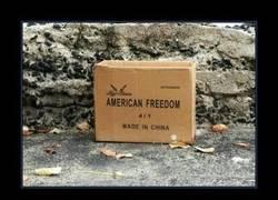Enlace a LIBERTAD AMERICANA