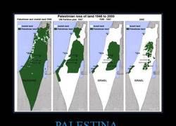 Enlace a PALESTINA
