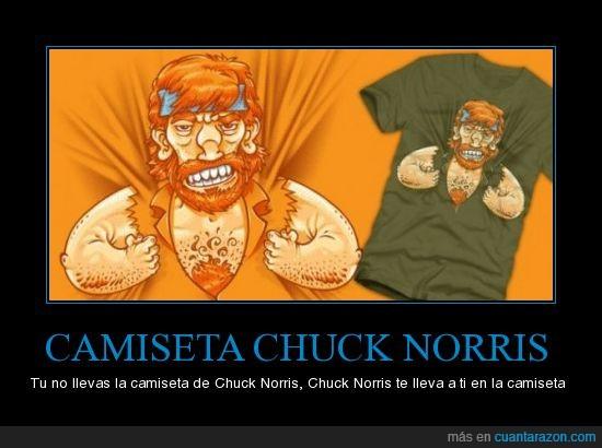 camiseta,chuck norris