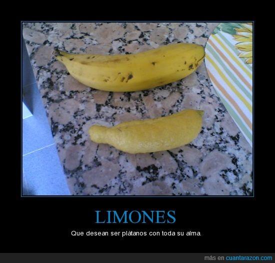 limón,parecido,plátano