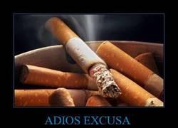 Enlace a ADIOS EXCUSA