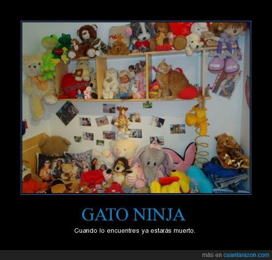 gato,juguetes,ninja