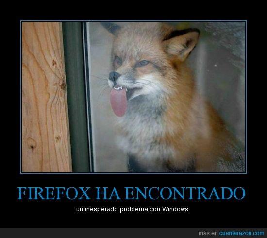 firefox,ventana,windows,zorro
