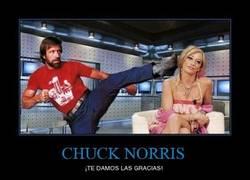 Enlace a CHUCK NORRIS
