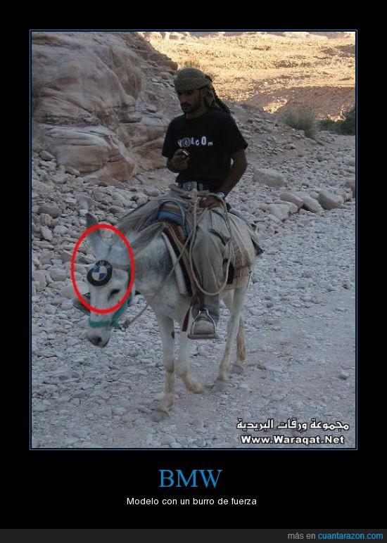 arabe,burro,carga,volcom
