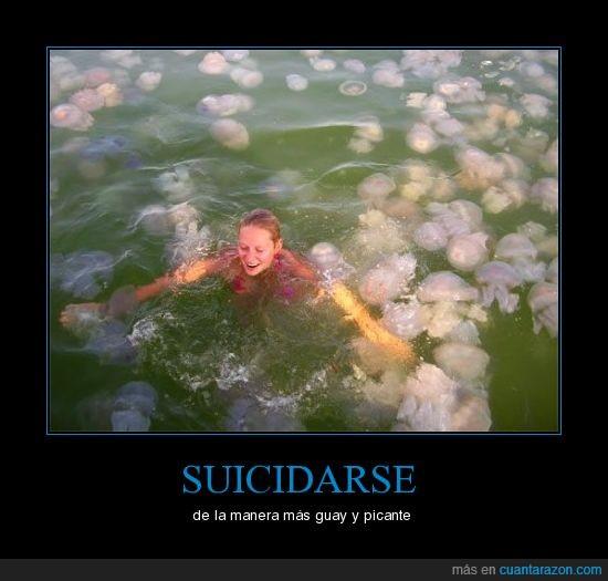 agua,bañarse,medusas,muerte