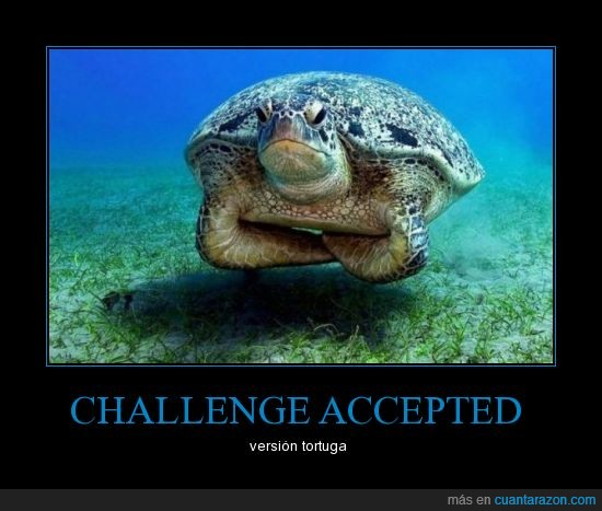 challenge accepted,tortuga