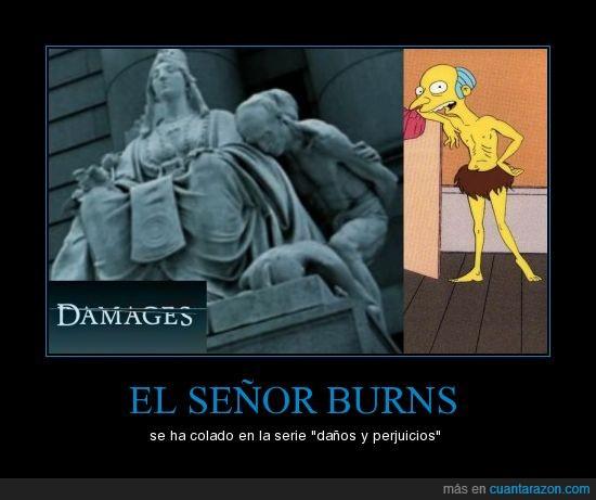 burns,daños y perjuicios,simpson