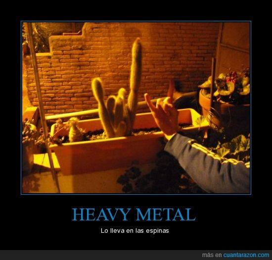 cactus,cuernos,heavy metal