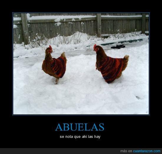 abuelas,Gallinas,ganchillo,nieve