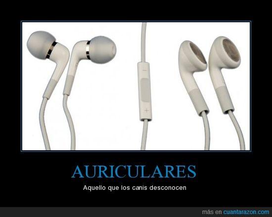 auriculares,canis,desconocimiento