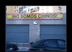 Enlace a CHINOS