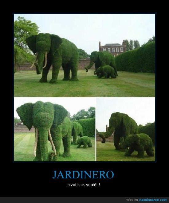jardin,jardinero