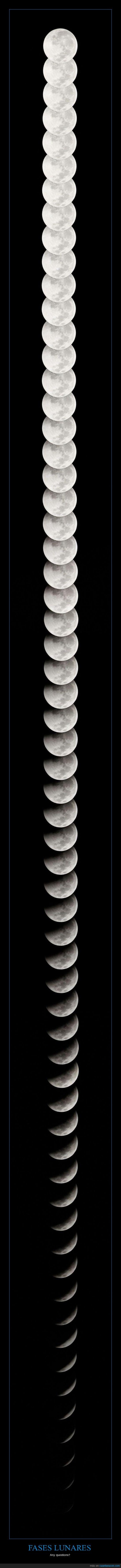 fases,llena,luna,menguante,nueva,penumbra,plenilunio