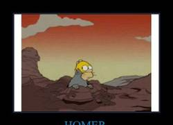Enlace a HOMER