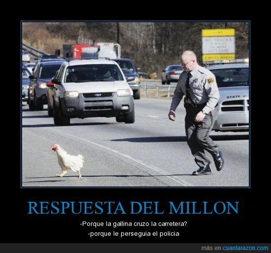 lol gallina policia