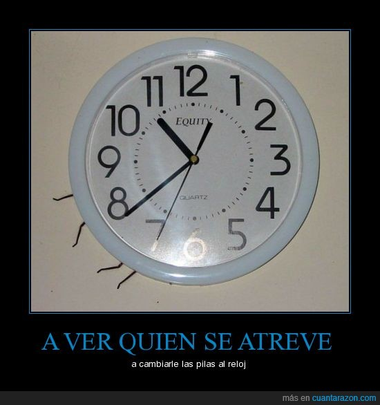 araña,pilas,reloj,that's suspicious