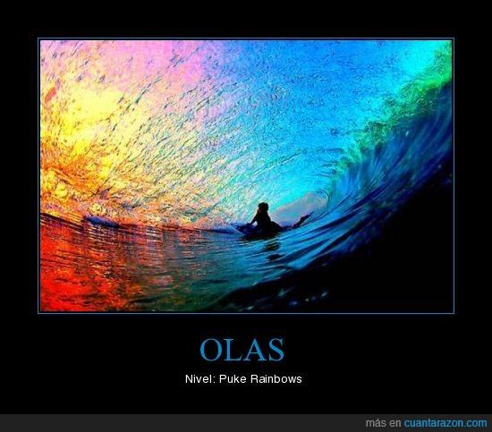 colores,foto,ola,surf