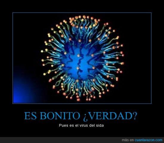 Bonito,Sida,Verdad,Virus,zas