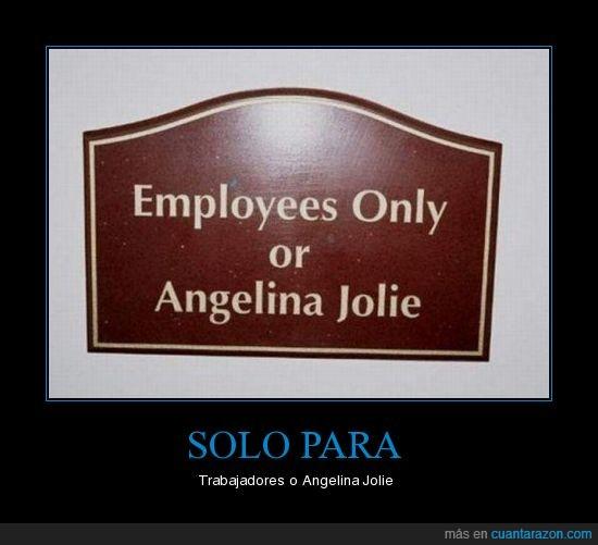 angelina,jolie,trabajadores