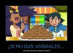 Enlace a ¿SI NO HAY ANIMALES...