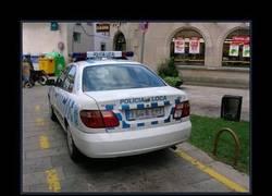 Enlace a POLICIA LOCA