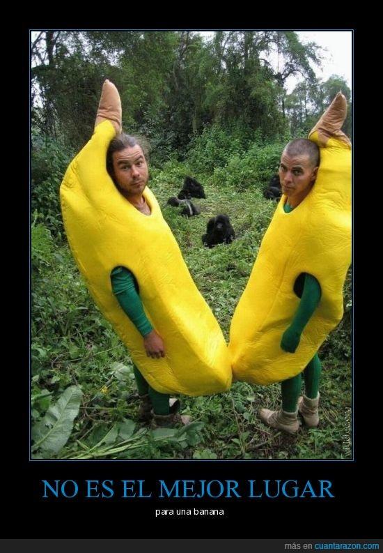banana,cosplay,mono