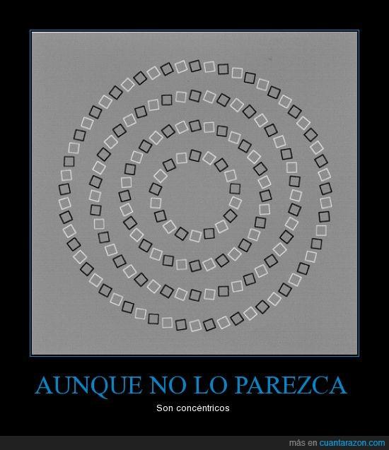 concéntricos,ilusión,óptica,parpadeadasaco