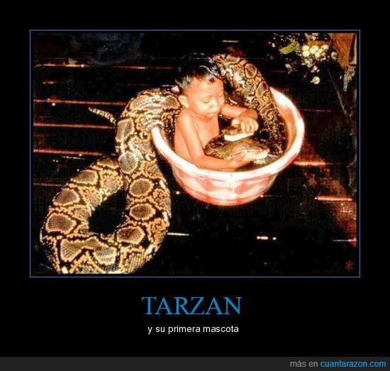 baño,serpiente,tarzan