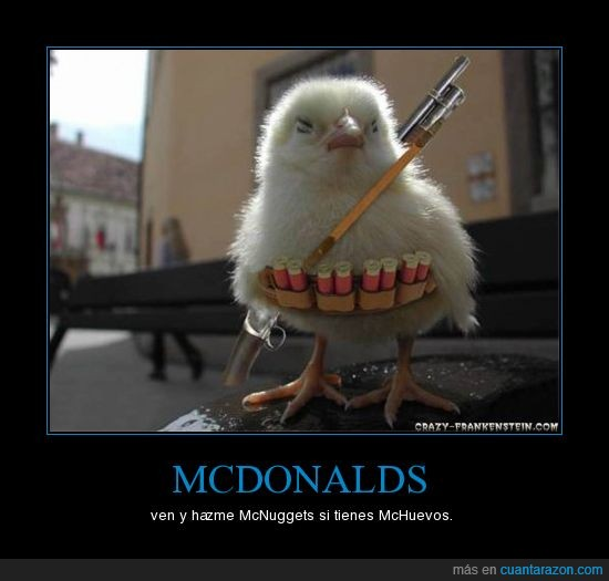 escopeta,mcdonalds,pollo