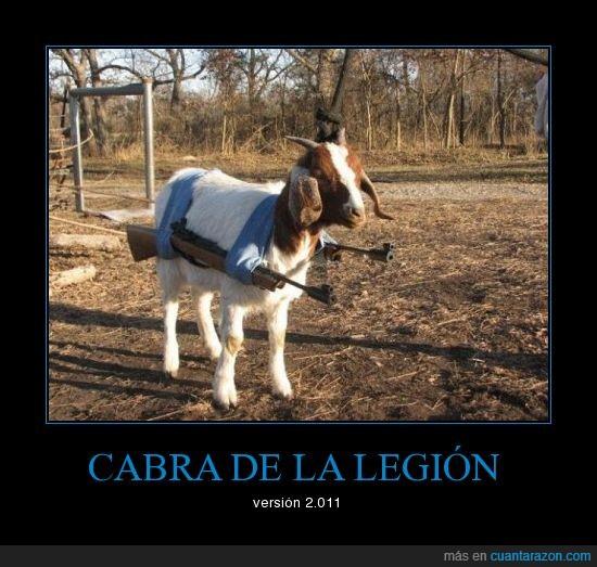 cabra,legión,pistolas