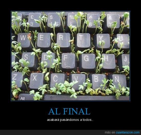 flores,mierda,teclado