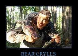 Enlace a BEAR GRYLLS