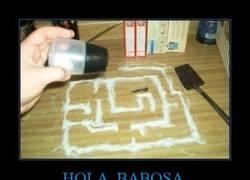 Enlace a HOLA, BABOSA