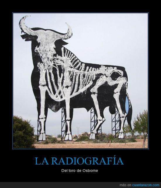 españoles,osborne,radiografía,toro