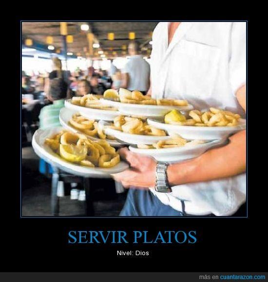 calamar,camarero,plato,restaurante