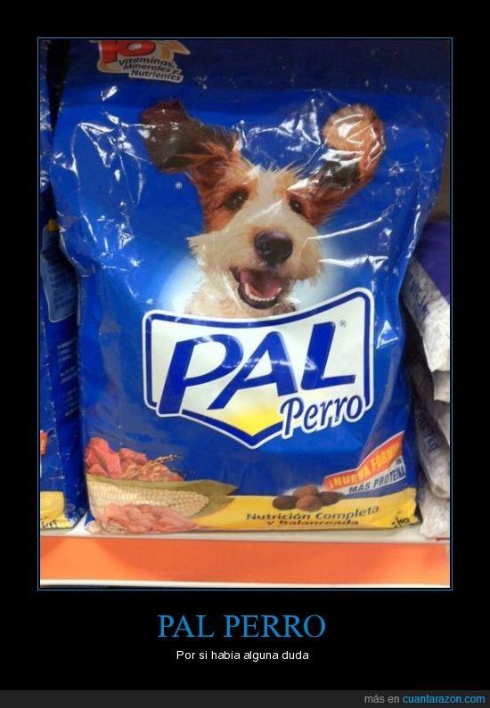 perro,publicidad