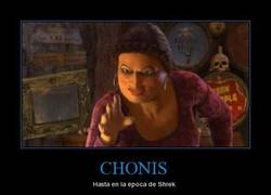 Enlace a CHONIS