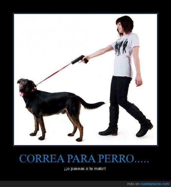 correa,pasear,perro,pistola
