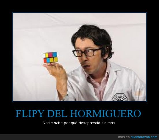 flipy,hormiguero