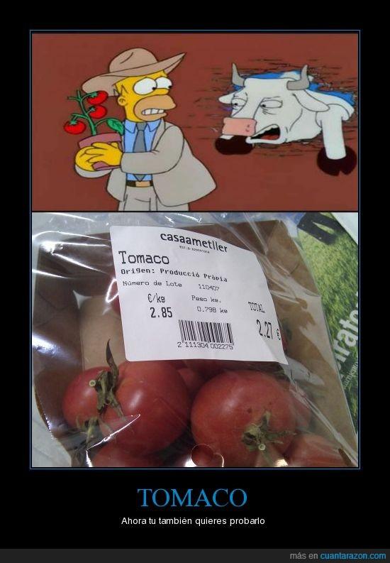 grito,simpson,tomacó,tomate,vaca