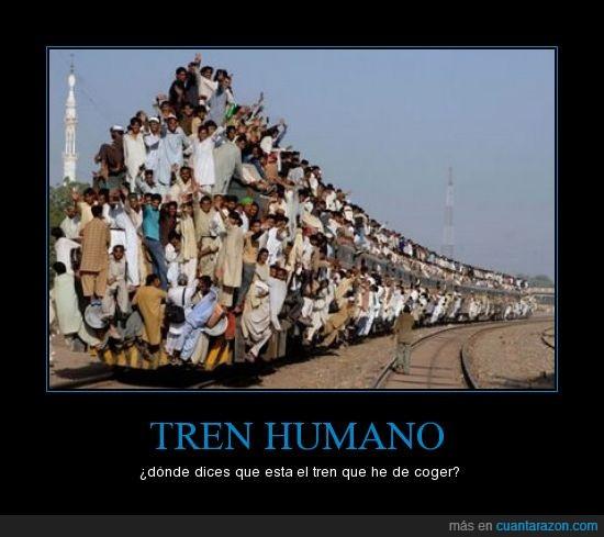 coger,humano,india,tren