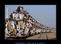 Enlace a TREN HUMANO
