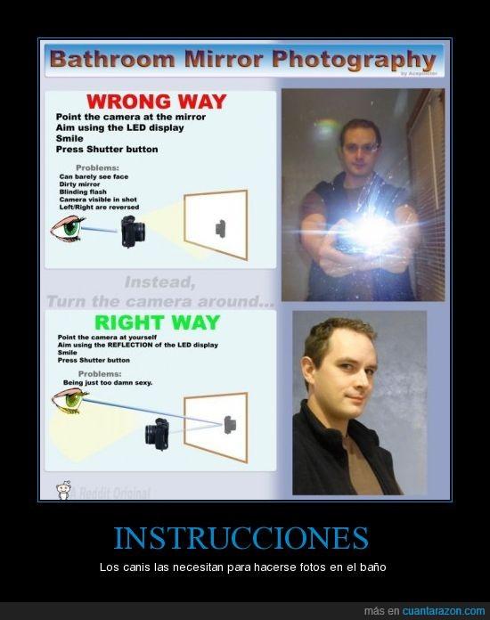 canis,espejo,fotografías,instrucciones