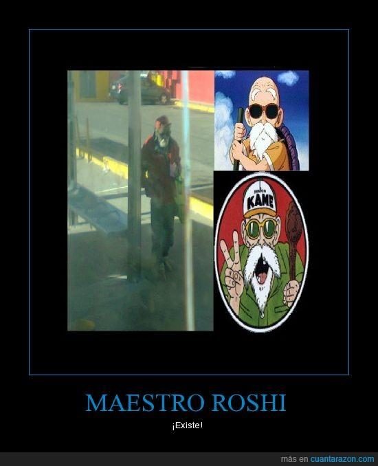 dragón,goku,maestro,roshi