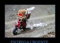 Enlace a ENTREGA URGENTE