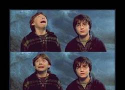 Enlace a POTTER FACE