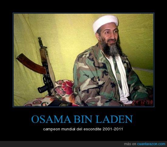 chuk norris fue de vacaciones a afganistan?,escondite,osama bin laden